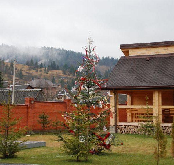 Заворожуючий вигляд на гори в готелі Золота Підкова