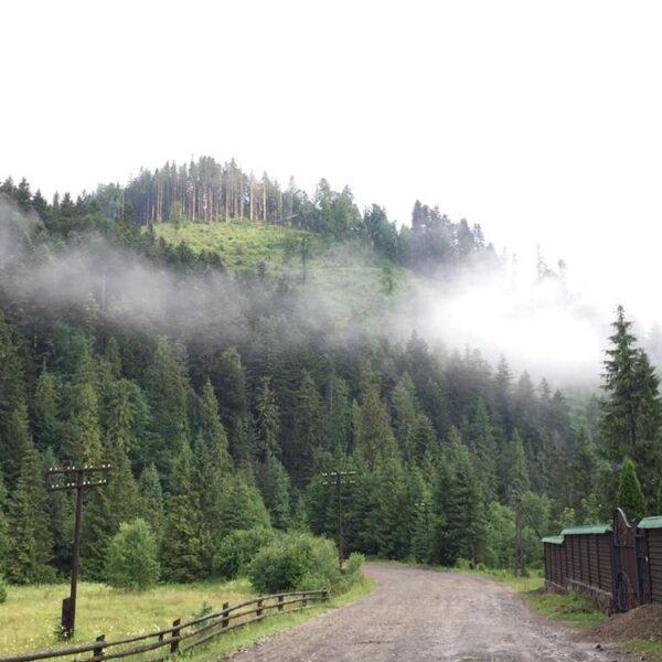Утро в Карпатах, отель «Лесной маеток» Славское