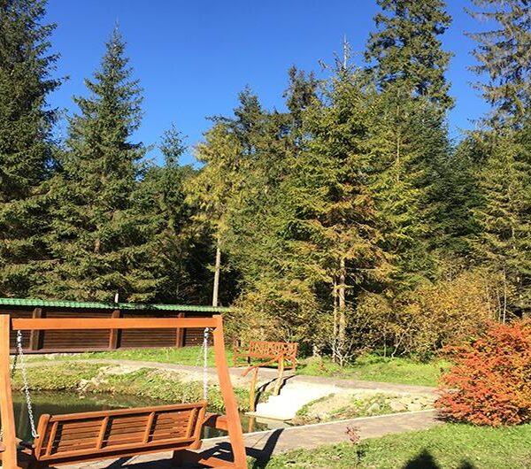 Золотая осень в отеле «Лесной маеток»
