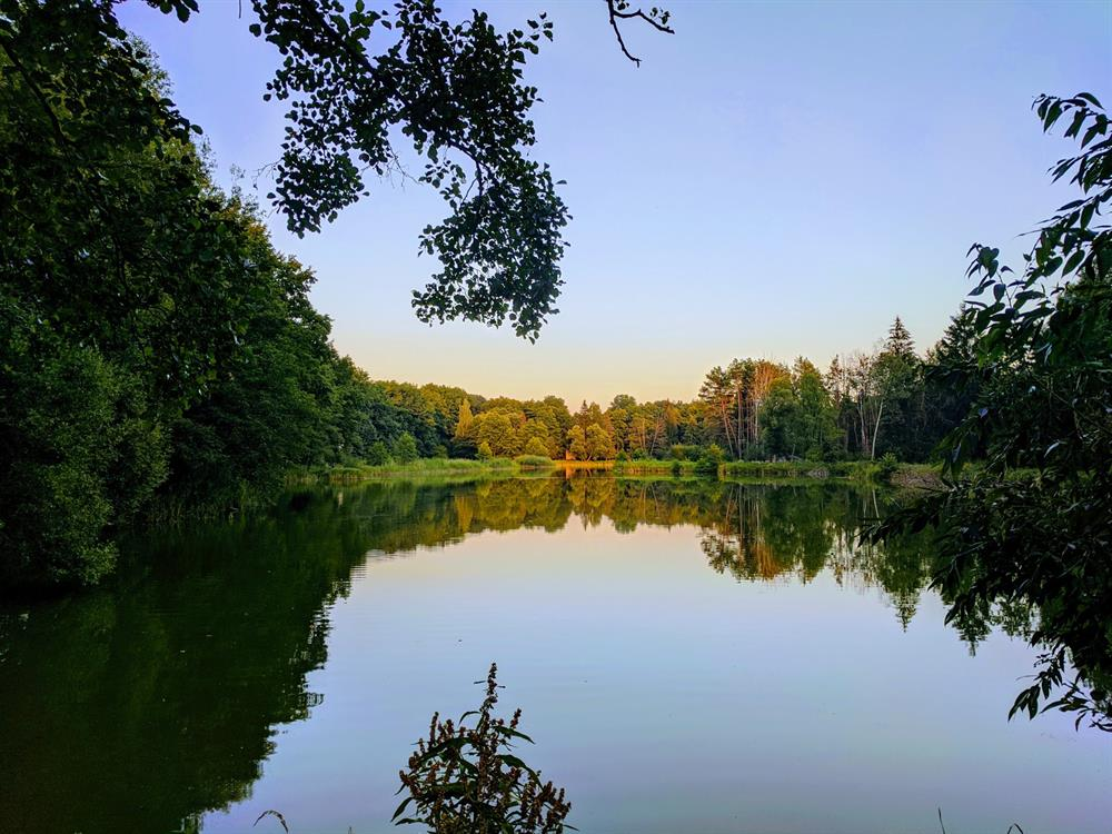Озеро коло санаторія Шкло