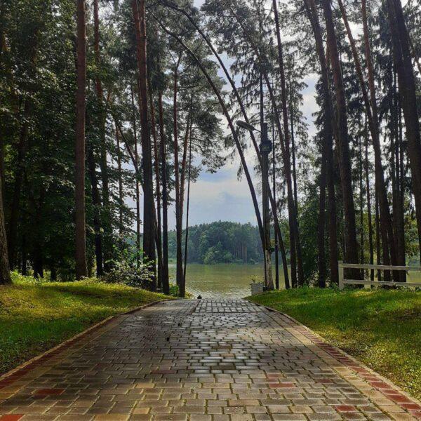 Дорога до озера в санаторії Пролісок