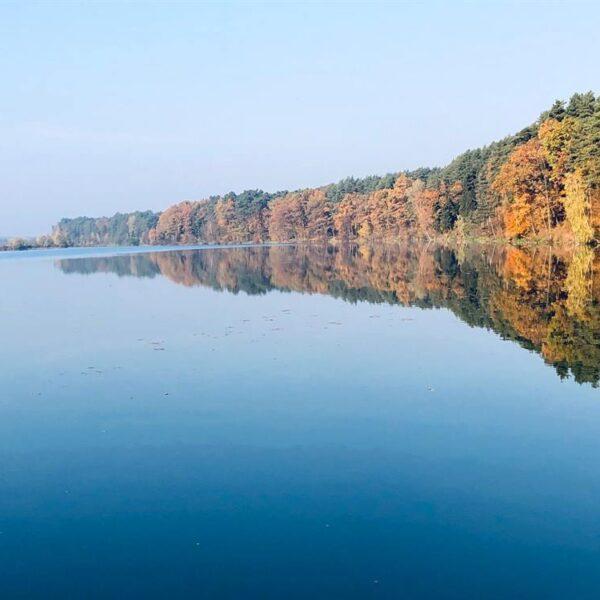 Утро на озере в санатории Пролисок