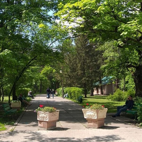 Зеленая территория санатория Жовтень