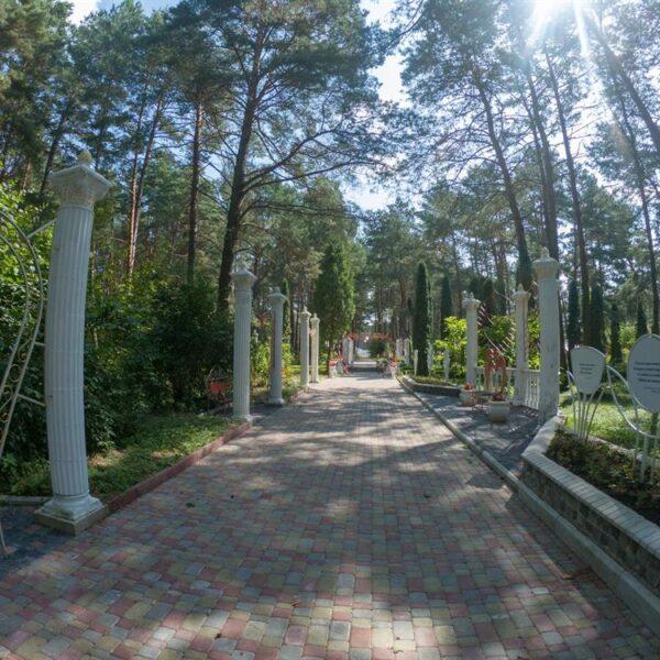 Доріжка для прогулок в санаторії Червона Калина