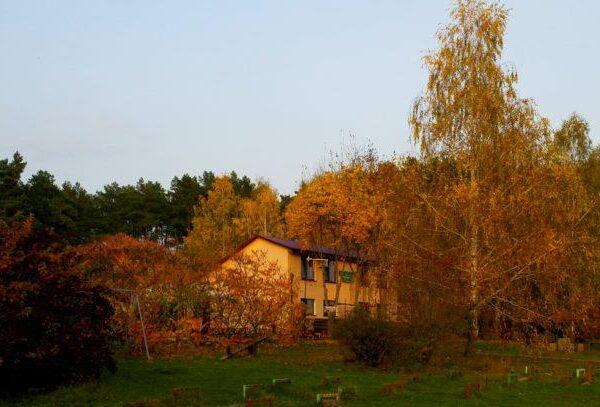 Осінь в санаторії Червона Калина